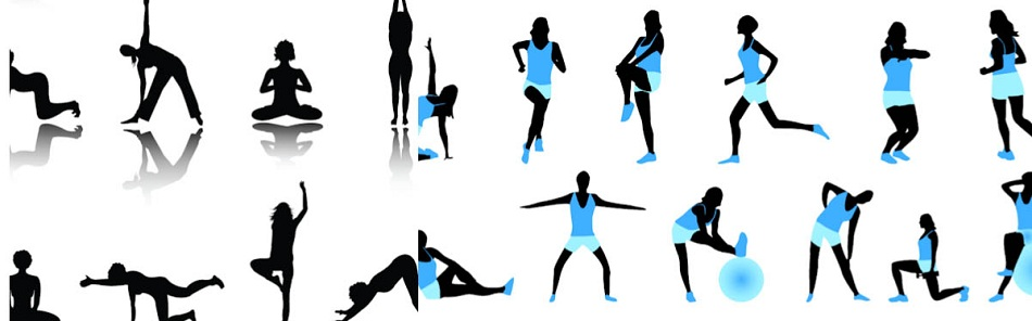 Fitness Check Com Sapa Fitness